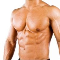 грудные мышци